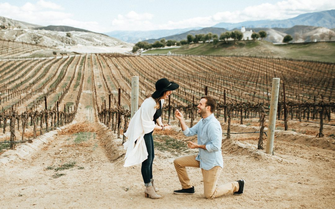 Temecula Surprise Proposal   Meghan & Sam